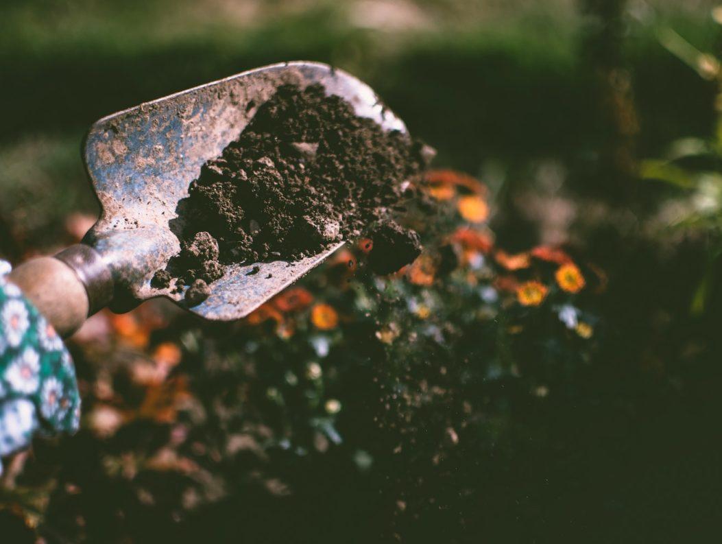 small shovel of dirt
