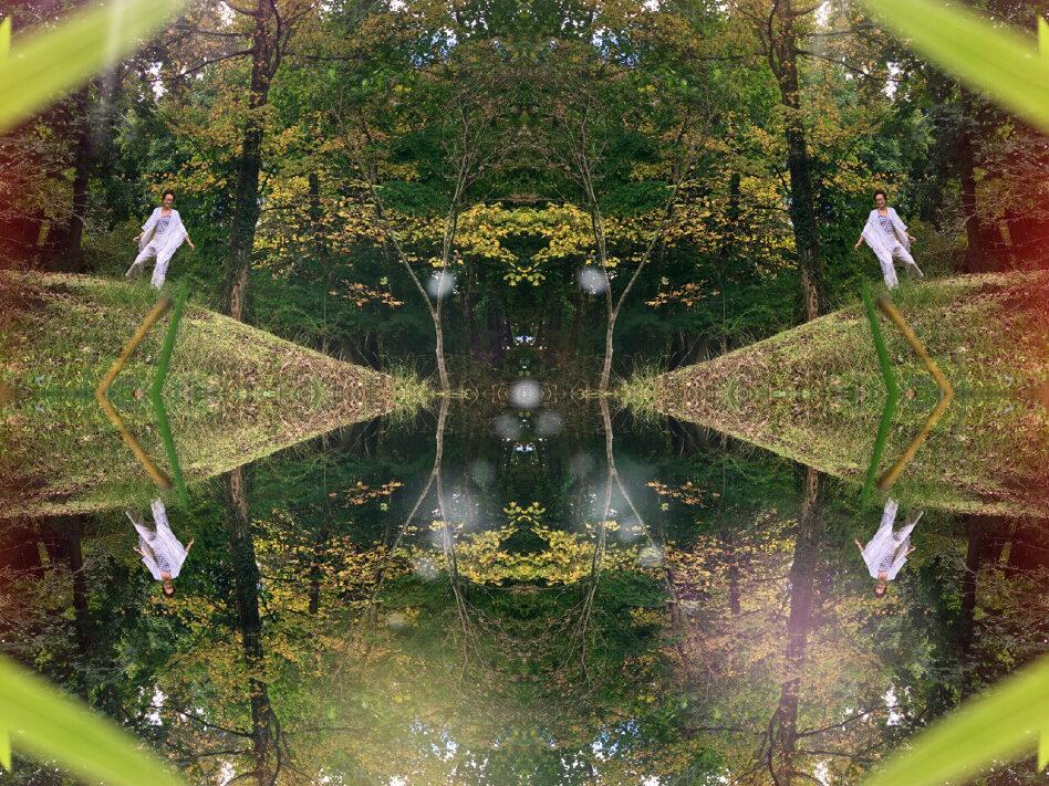 Lobsterbird as a fractal image dancing near water